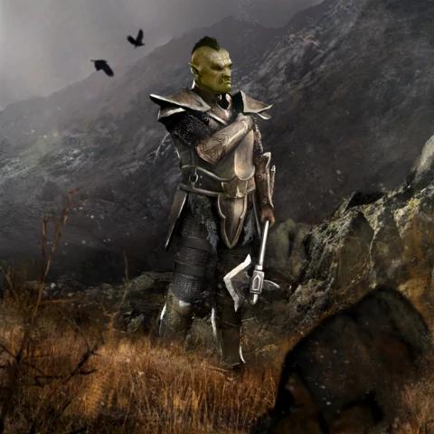 Image Recruit Orc Card Art Png Elder Scrolls Fandom Powered By Wikia Elder Scrolls Art Skyrim Orc Elder Scrolls