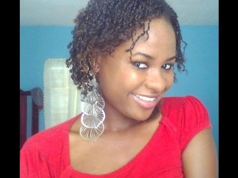 Mini Twists On Short Natural Hair Youtube Natural Hair Styles