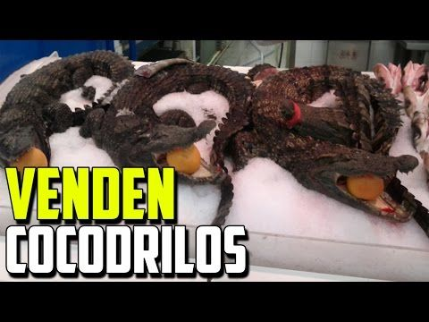 ►Los Secretos Ocultos De La Aspirina   Adelgaza La Sangre? - YouTube
