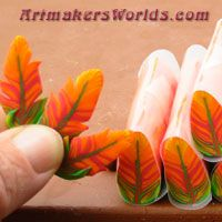 . Detailed Feather canes