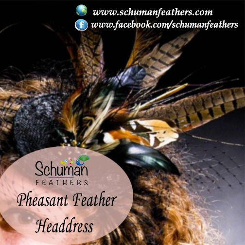 Make gorgeous #headdresses with #pheasantfeathers for #carnival #celebration