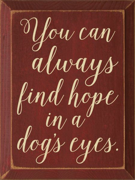 Wood Sign - You Can Always Find Hope In A Dog's Eyes. #animalcaptions