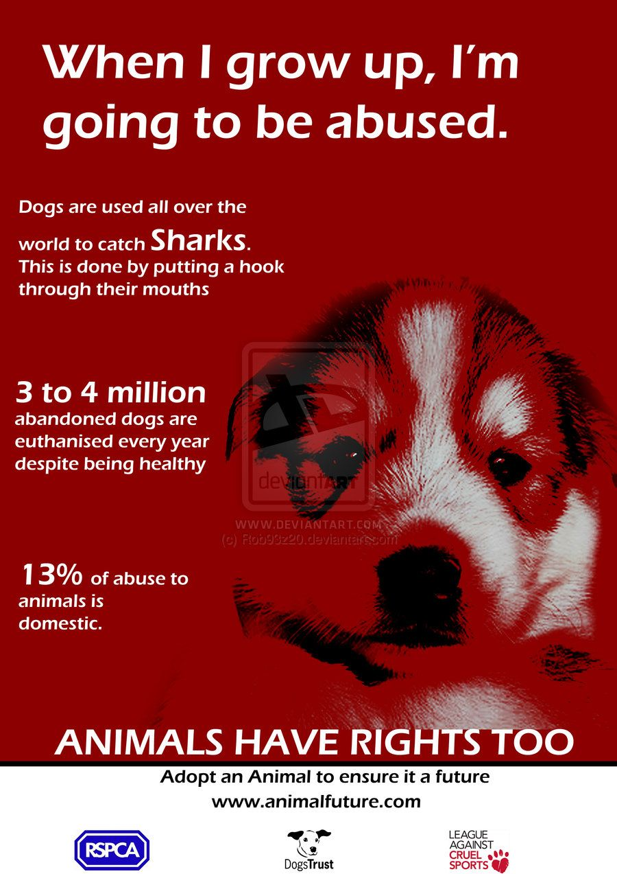 Animals Cruelty Posters Google Search Animals Animal Cruelty When I Grow Up