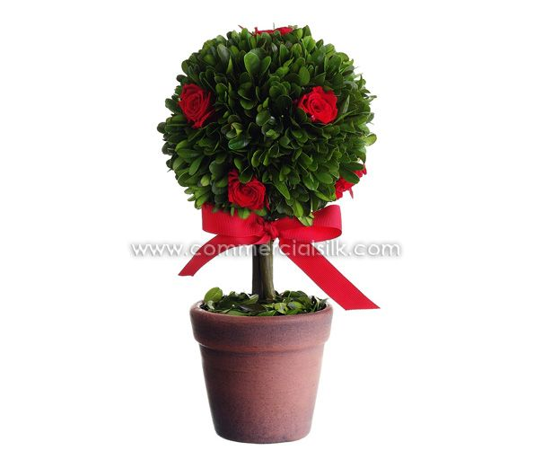 Decorative Boxwood Balls Preserved Boxwood Rose Ball Topiary  My Decorative Advise & Ideas