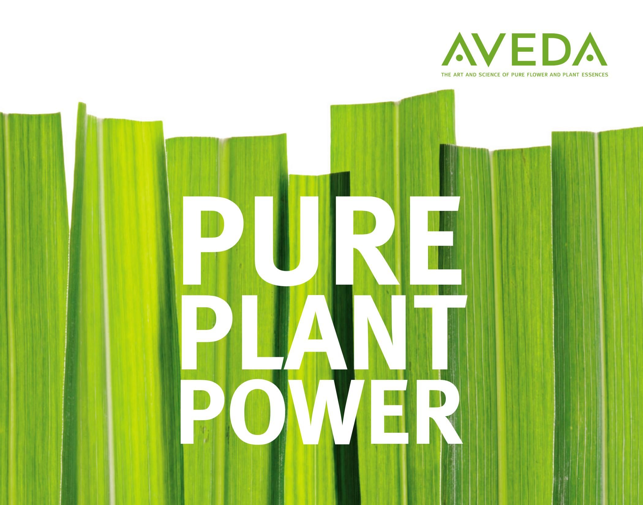 Aveda AVEDA Pure Plant Power Aveda, Pure products