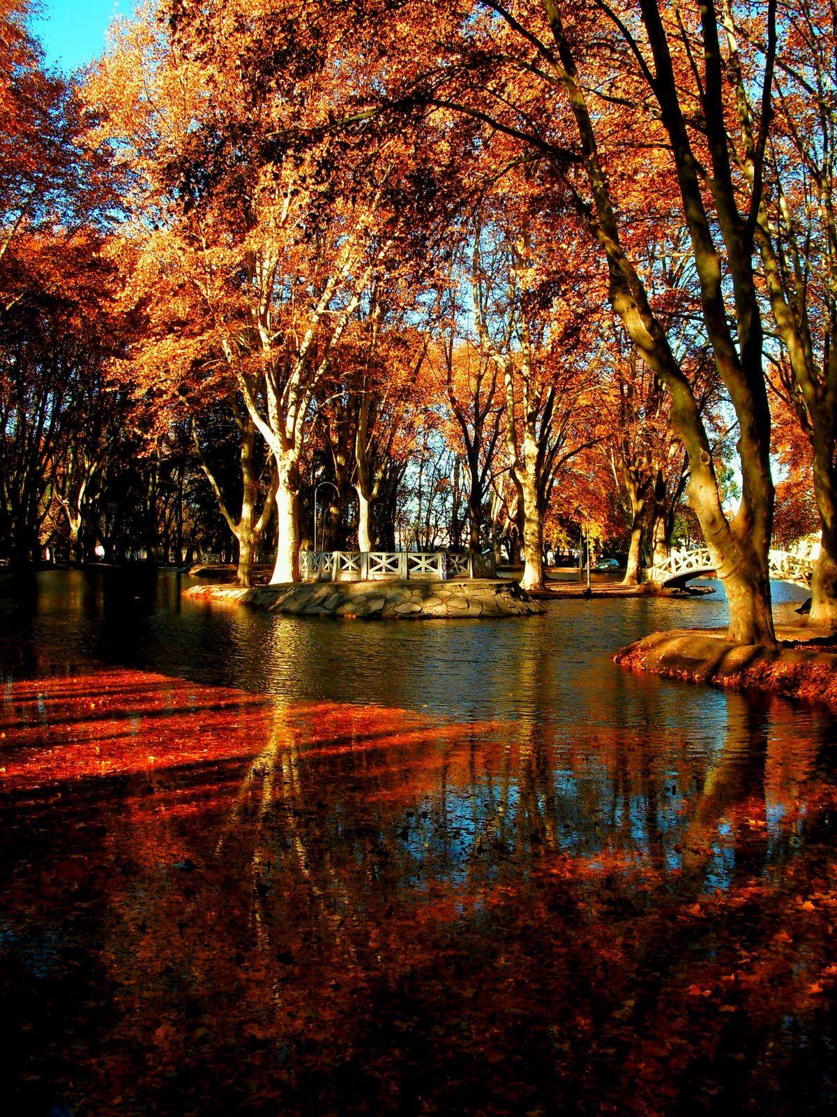 Parque Sarmiento - Río Cuarto - Córdoba | Argentina | Argentina ...