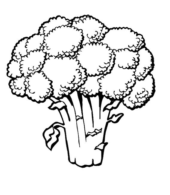 green vegetable coloring page | Food | Pinterest