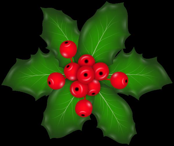 Christmas Mistletoe Png Clip Art Image Christmas Tree Decorations Christmas Holly Christmas Decorations