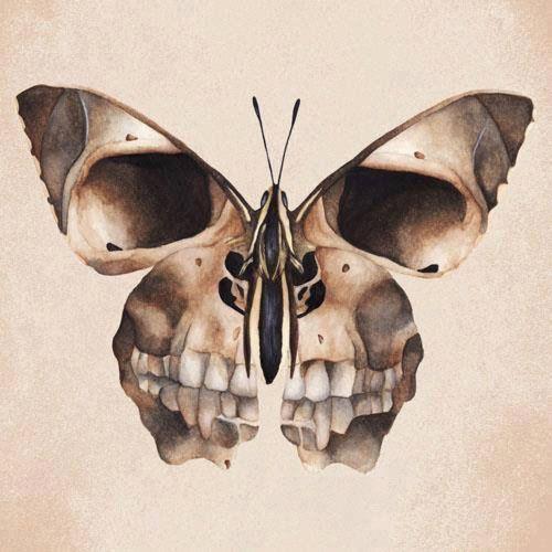 More Http Tattinitup Tumblr Com Skull Skull Tattoos Skull Art