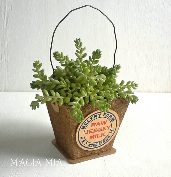 A simple peat starter pot is now a decorative accent or treat basket! (Succulent and Flowers Not included.) The addition of a wire handle, vintage milk bottle cap, and excelsior gives it farmhouse charm. Line it with a small plastic cup and plant a succulent in it! This listing is for 1 basket. More are available in my Shop! See the coordinating spools also available https://www.etsy.com/listing/274944368/2-upcycled-bingo-card-milk-bottle-cap?ref=shop_home_acti...