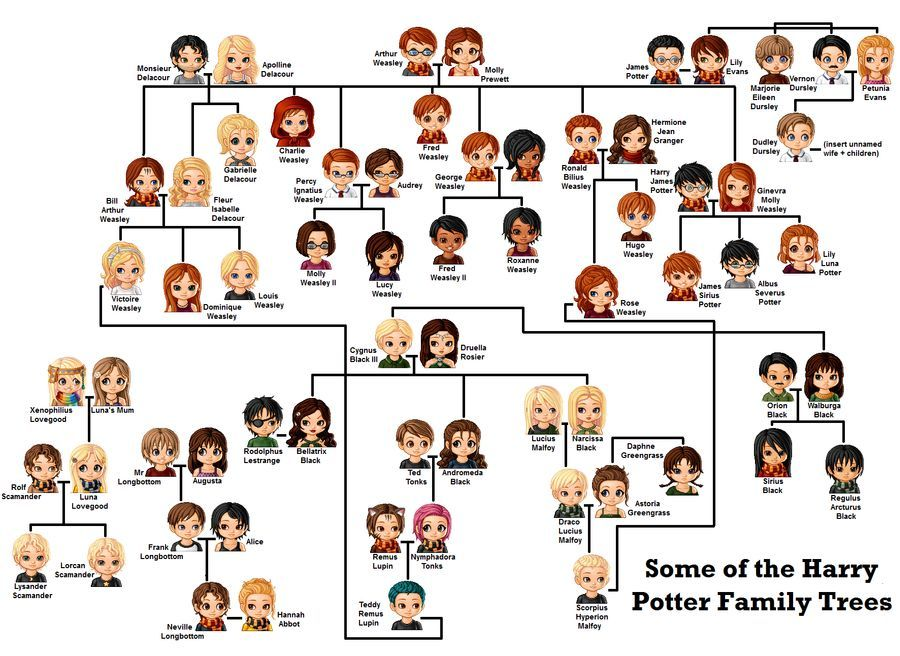 Harry Potter Family Tree By Wasitmeanttodothat On Deviantart Harry Potter Family Tree Harry Potter Puns Harry Potter Pictures