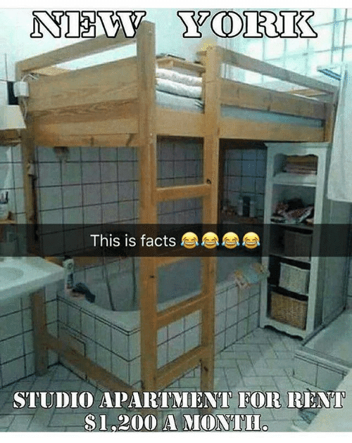 Come Here For Your Weekly Laugh Meme Style See More Ideas About Humor Funny And Apartment Living 25 Best Memes Funny Good Morning Memes Laugh Meme Apartment