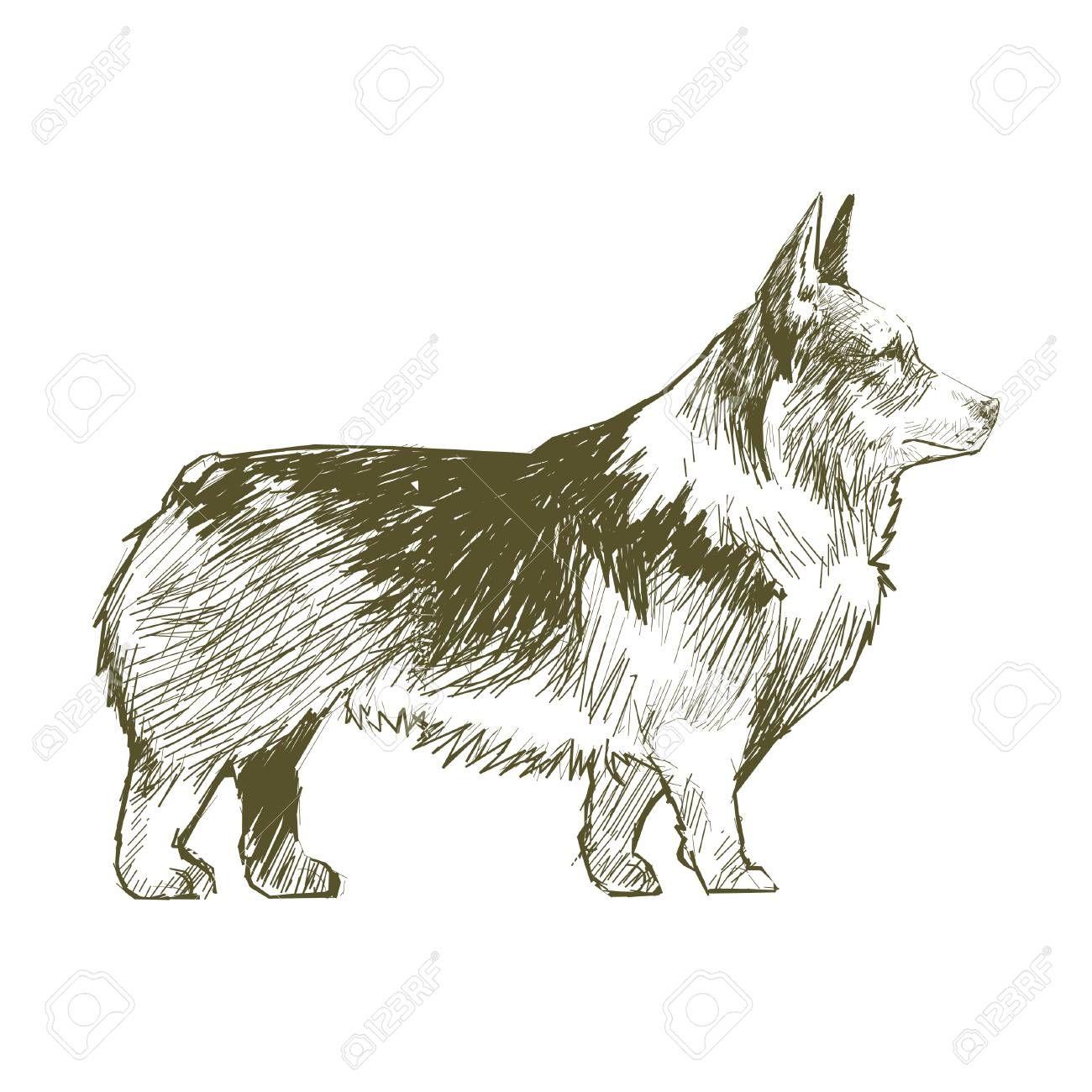 Illustration Drawing Style Of Dog Affiliate Drawing Illustration Dog Style Print Drawings Illustration