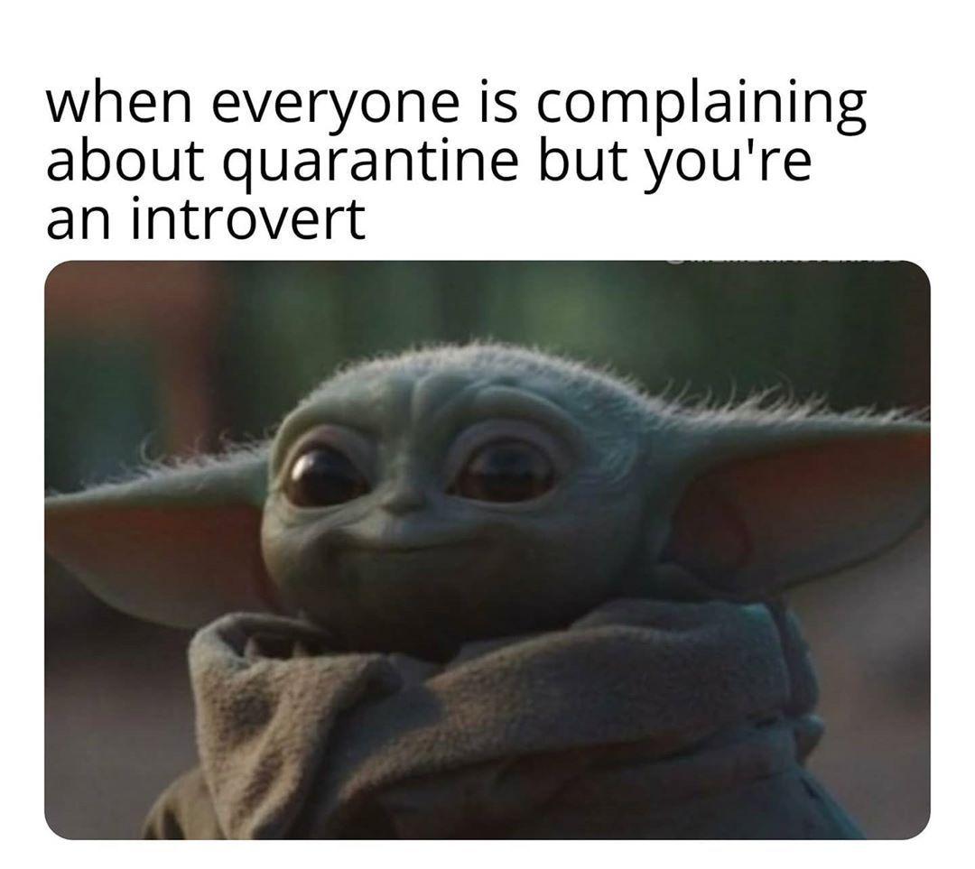 Baby Yoda On Instagram Life Is Good Follow Babyyoda I Am For More Cuteness Share Baby Yo Yoda Funny Yoda Meme Star Wars Memes