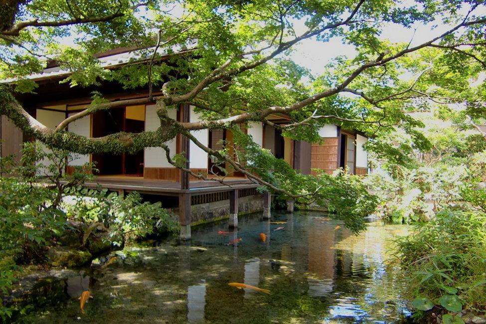 長崎県 湧水庭園 四明荘 庭園 絶景 旅