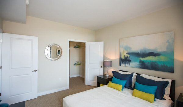 New Year New Apartment Dc Apartments To Rent Right Now Dc