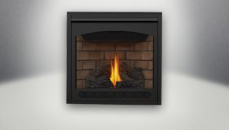 Direct Vent Gas Fireplace Inserts Napoleon Fireplaces Vented