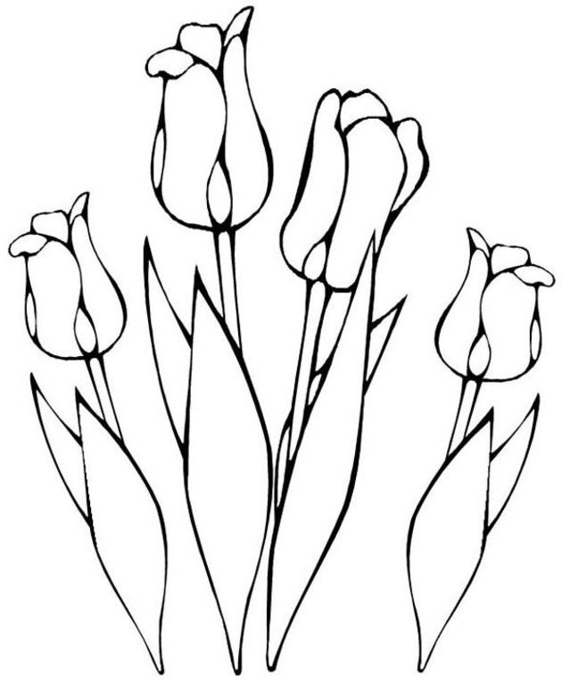 Tulips Coloring Page Embroider Or Appliqu