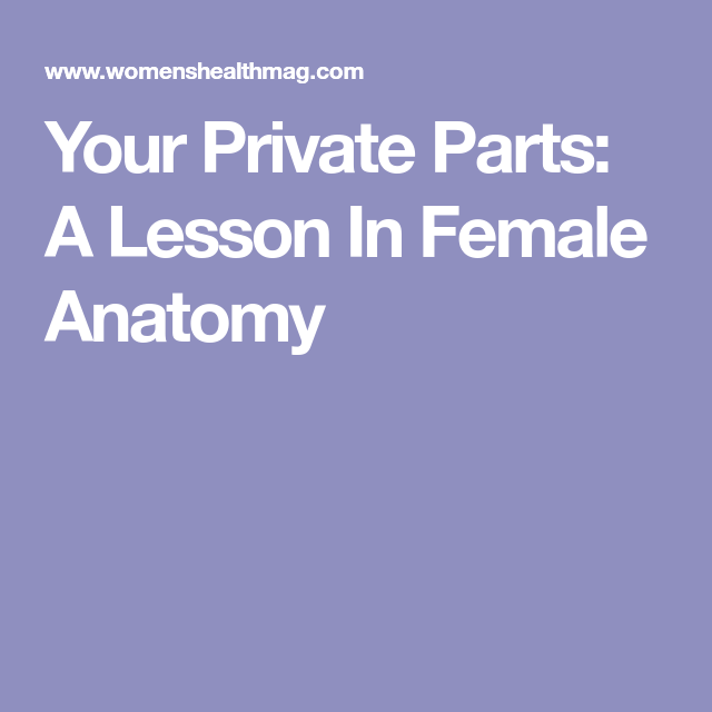 Your Private Parts A Lesson In Female Anatomy Love Pinterest