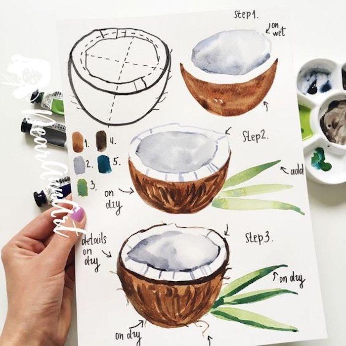 kokosnuss zeichnen lernen anleitung in drei schritten