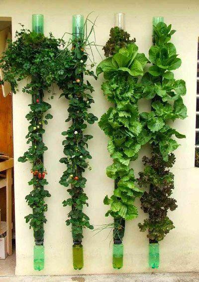 Researching Diy Vertical Garden Ideas That Actually Look Good Vertical Garden Plants Bottle Garden