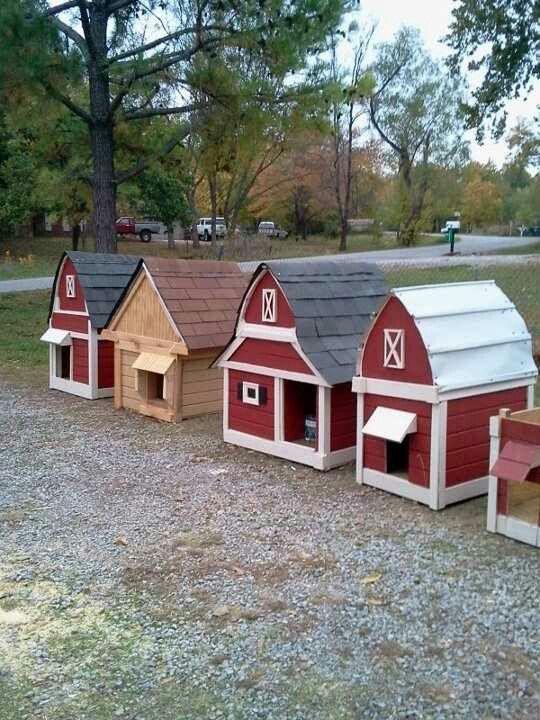 Red Barn Dog Gone Good Dog House Treasurehunter45 Gmail Com
