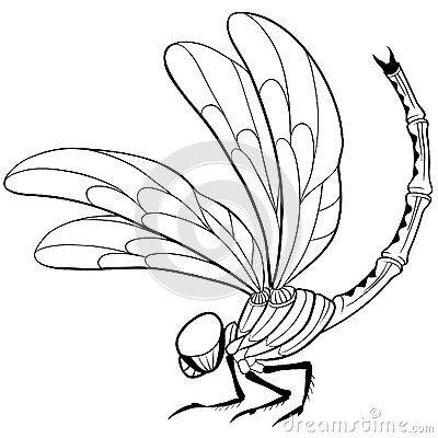 Pretty! | Tattoo Dragofly | Pinterest
