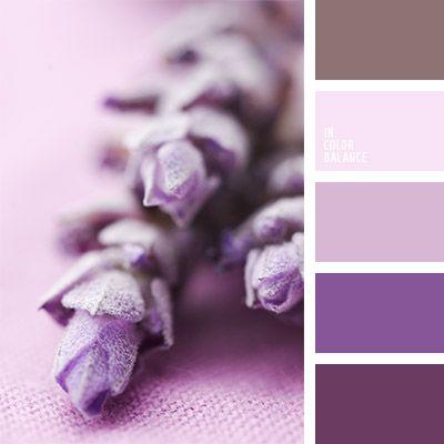 Color Lavanda Matices De Color Lavanda Matices De Colores Pastel - Color-lila-pastel