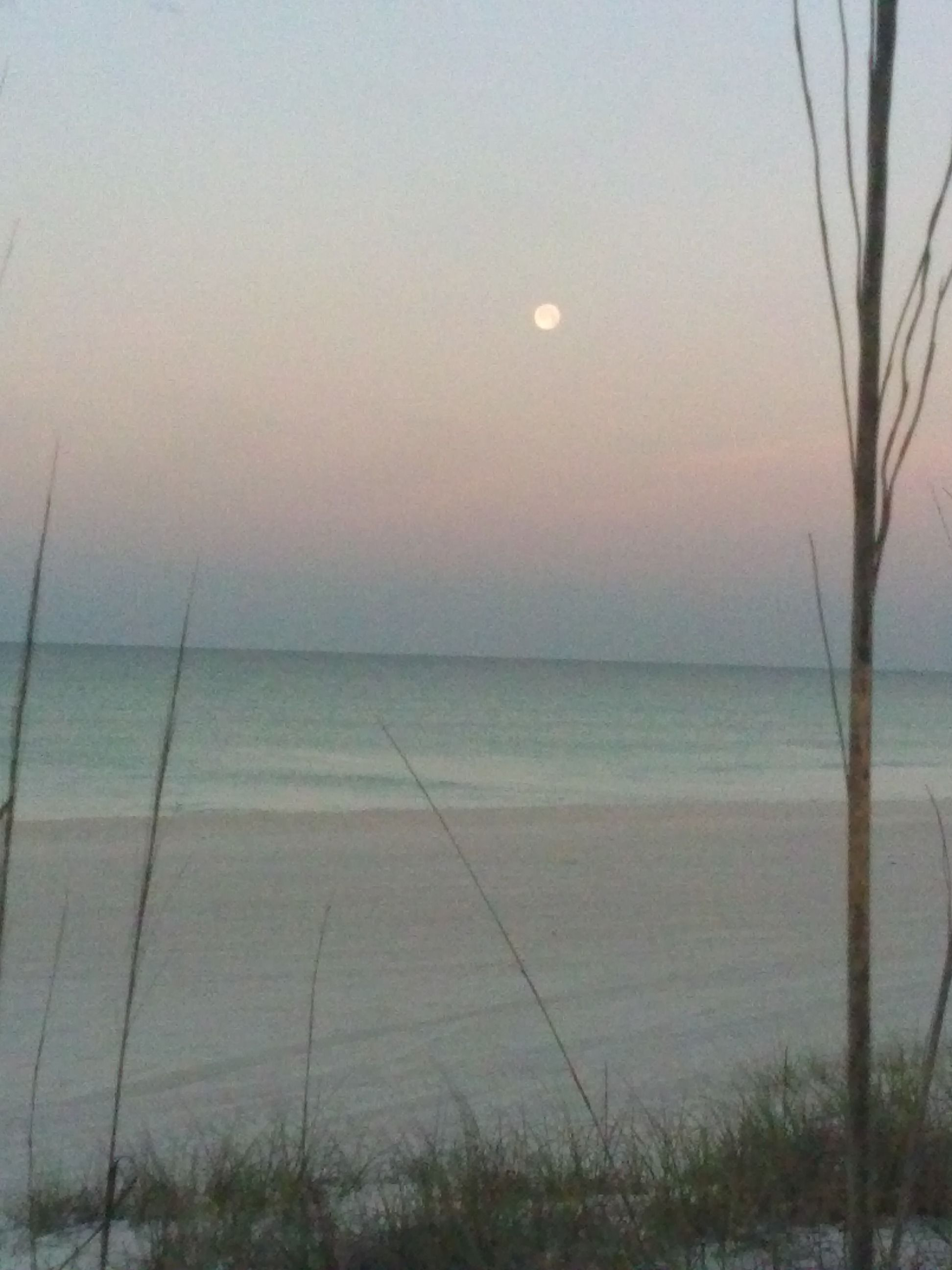 The Moon At Sunrise Sunnyside Beach Fl