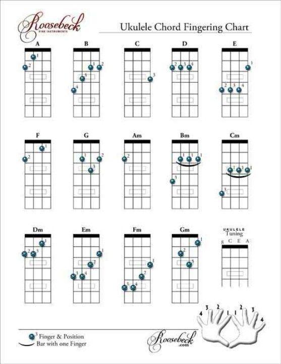 basic ukelele chords  gotta keep these in mind