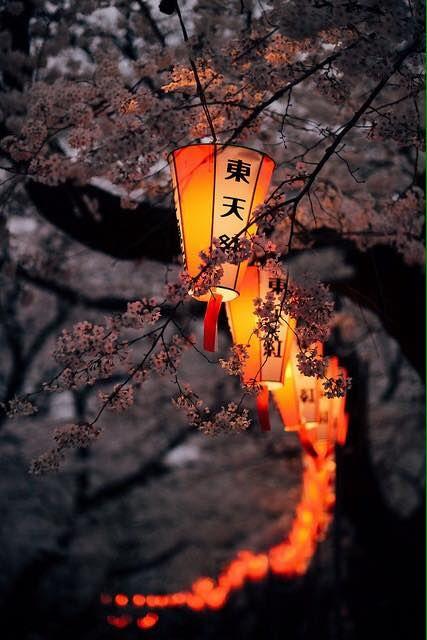 ..Chinese lanterns
