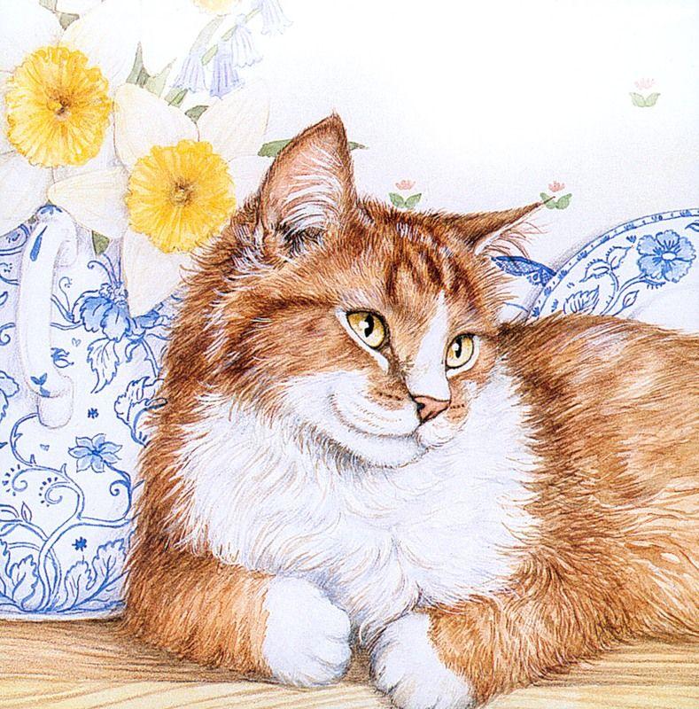 Открытка кот нарисован, днем рождения мужчине