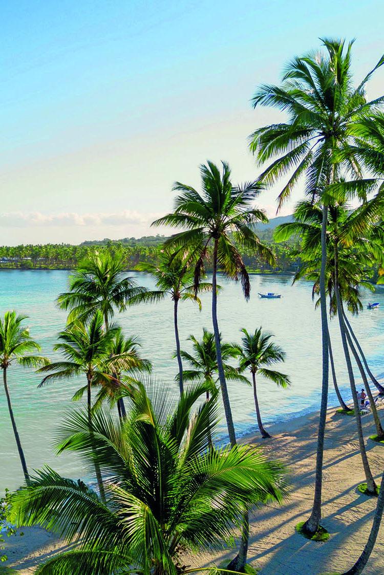 Badeferien In Der Dominikanischen Republik Ein Traumhafter Weisser Strand Mit Palmen Dominikanische Republik Zentralamerika Karibik
