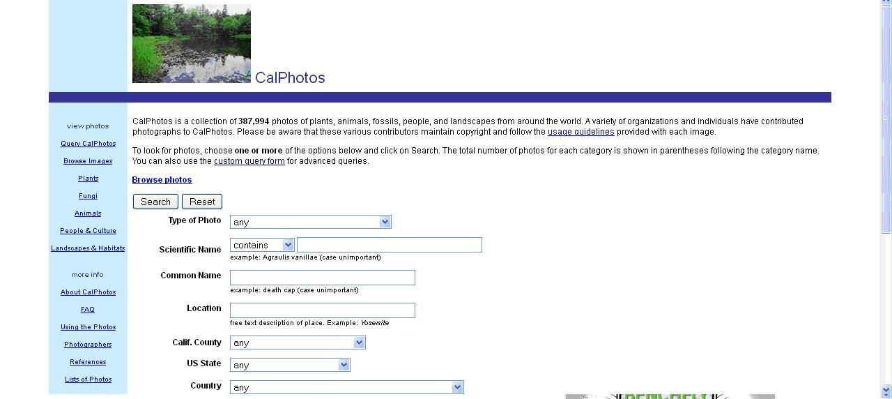 CalPhotos es una colección de más de 380.000 fotografías de plantas, animales, fósiles, personas y paisajes de todo el mundo, elaboradas dentro de un proyecto de la Universidad de California.