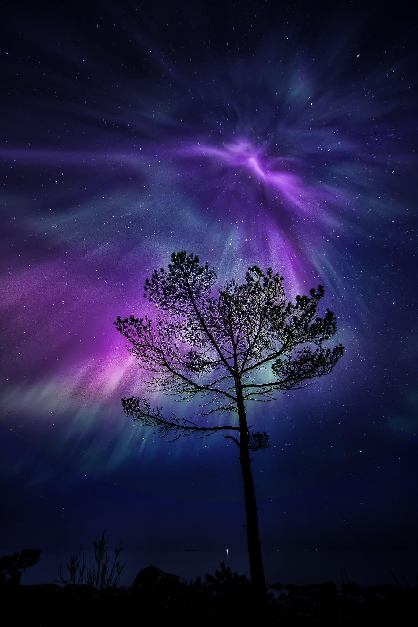 ~~Amazing night in Porvoo Finland   purple and blue Aurora ...