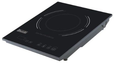 Eurodib electric induction burner. allegedly this one does not cycle power on & off during cooktime for better simmering. $145