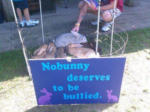 No bunny deserves abuse