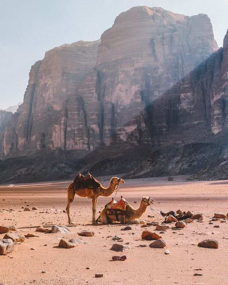 Wadi Rum Desert, Jordan #traveltojordan