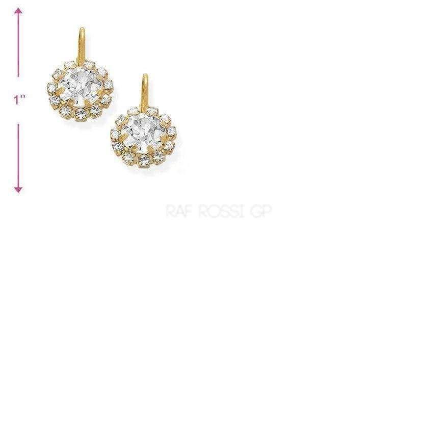 Cz Flower lever back 18kts Gold Plated Earrings