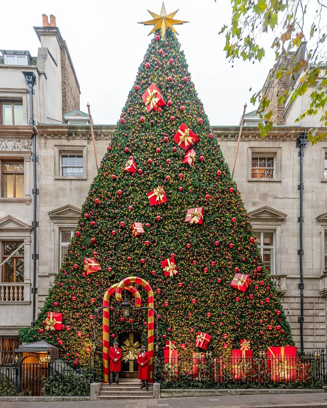 London Uk Europe On Instagram It S Looking Like Christmas Down At Annabels London Christmas Cool Christmas Trees Funny Christmas Tree