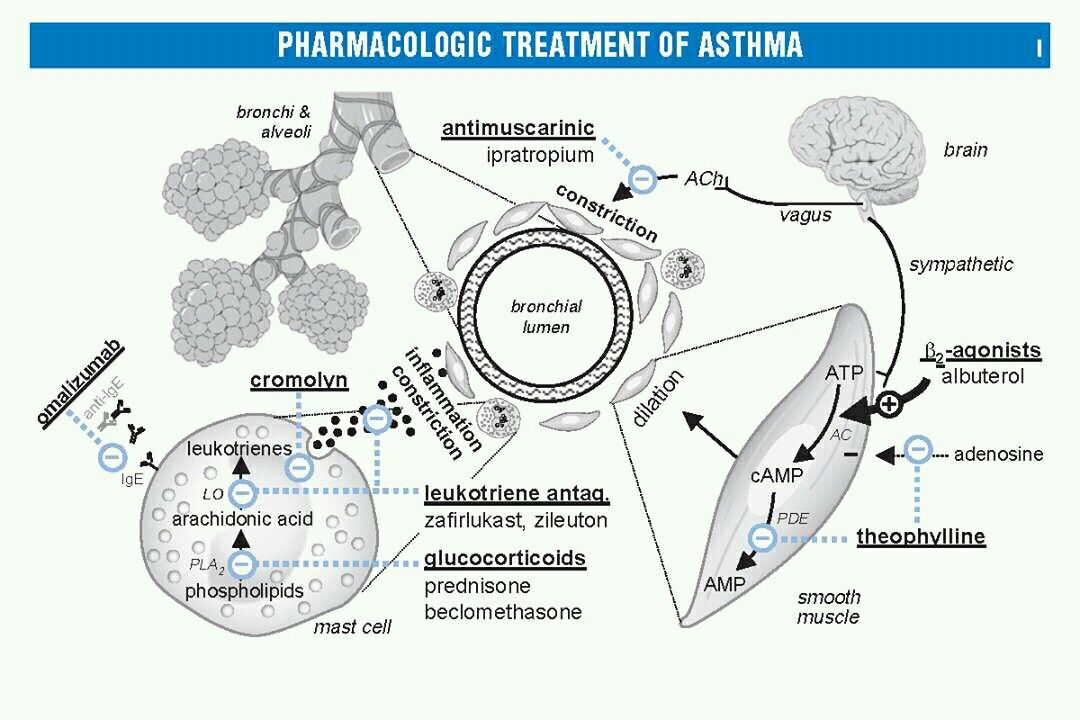 tab lorazepam mechanism of action