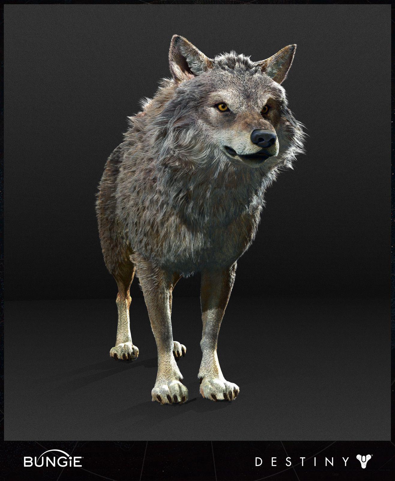 Destiny - Rise of Iron - Wolf High Poly, Ian McIntosh on ArtStation ...