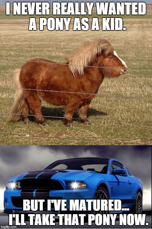 A car for bronies.