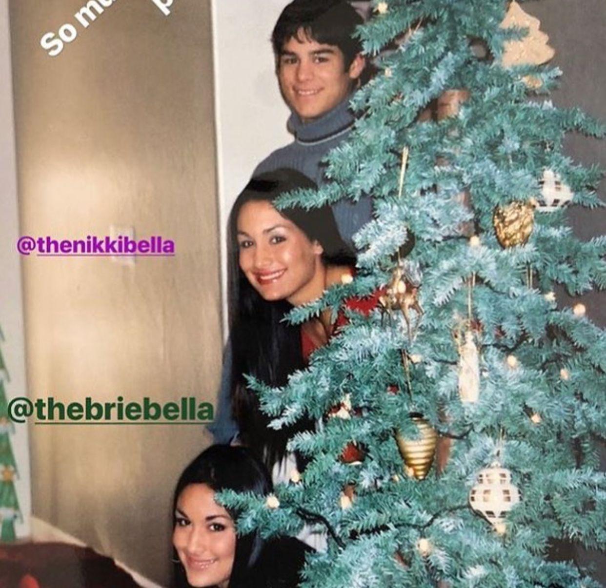 Brie, Nikki and JJ | WWE | Pinterest | Bellisima