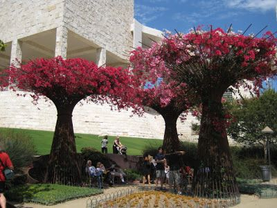 J Paul Getty Museum Bougainvillea And More J Paul Getty Center And Museum Summer Los Angeles Landscape Garden Landscaping J Paul Getty