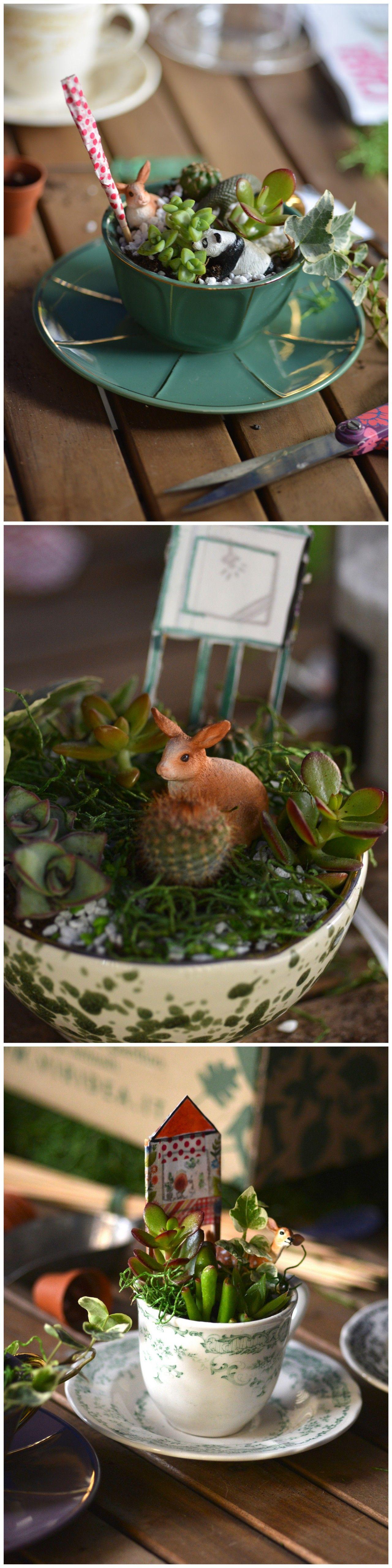 Le piante in vasi di vetro e in bottiglia | Piante in vaso ...