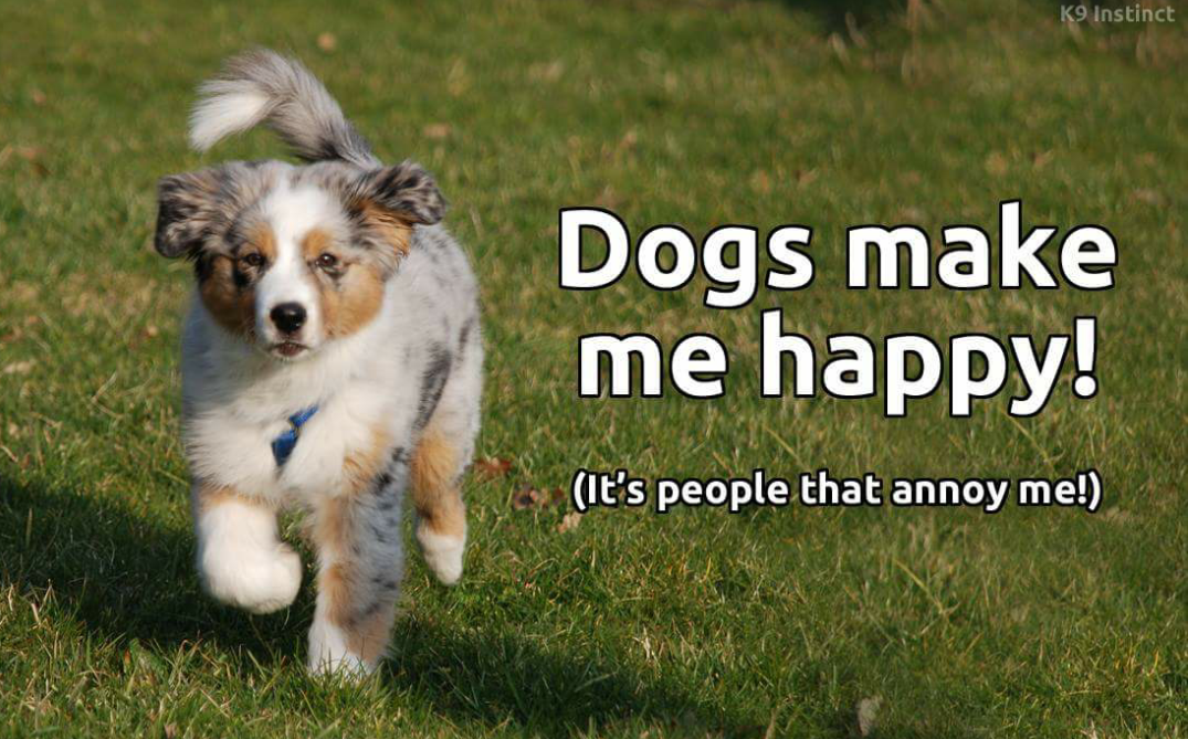 Woof •~• Dogs make me happy!