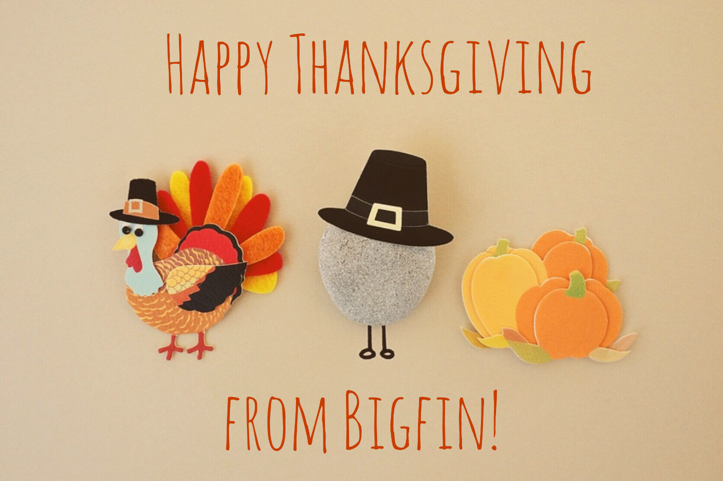 Happy Thanksgiving From Everyone Here At Bigfin We Hope