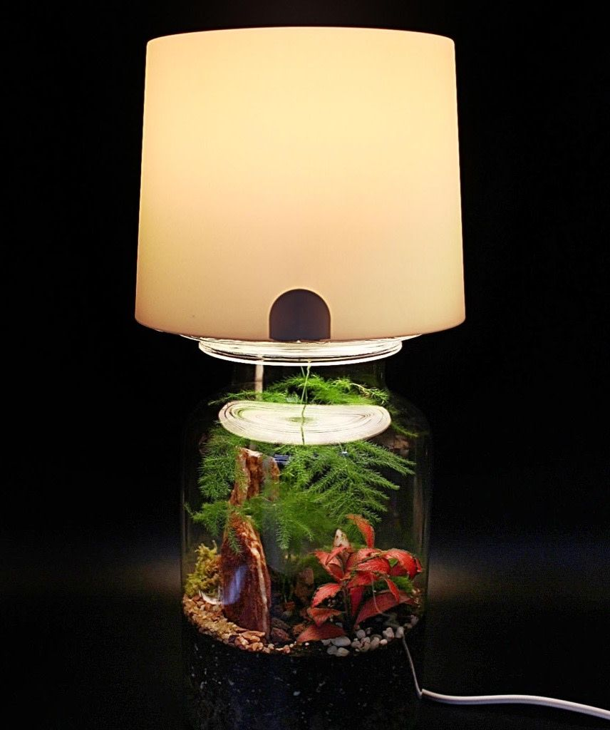 Terrarium Lamp An Easy Hack For Your Miniature Garden Succulent