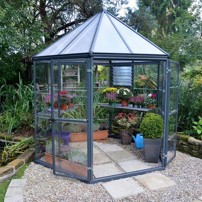 Oasis Hexagonal Greenhouse   Greenhouse gardening, Garden ...